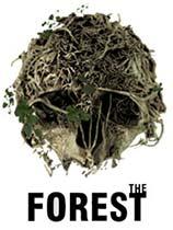 森林v1.06升级档+免DVD补丁